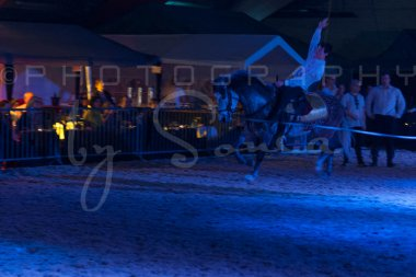 salon-du-cheval--hannut-1650_25979702920_o