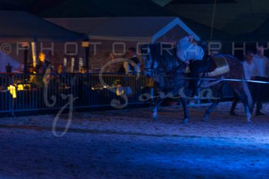 salon-du-cheval--hannut-1665_26252574215_o