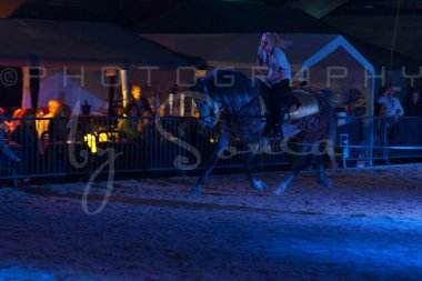 salon-du-cheval--hannut-1667_25647780624_o