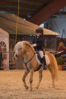 salon-du-cheval--hannut-171_26160315542_o