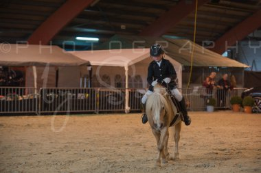 salon-du-cheval--hannut-174_26252571565_o