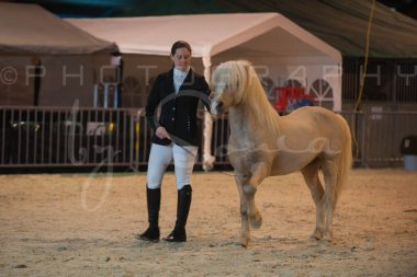 salon-du-cheval--hannut-195_26160310972_o