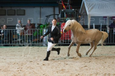 salon-du-cheval--hannut-202_25979719820_o