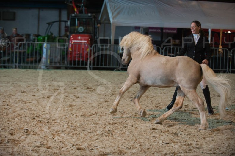 salon-du-cheval--hannut-240_26160307402_o