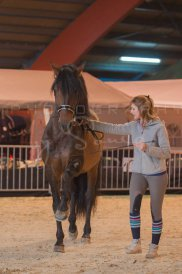 salon-du-cheval--hannut-290_25979887150_o