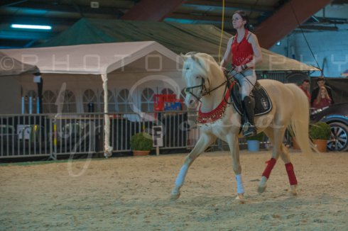salon-du-cheval--hannut-307_25647959454_o