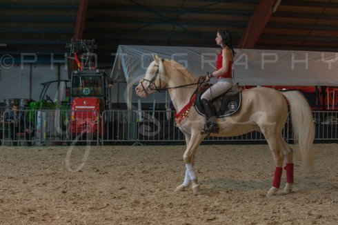 salon-du-cheval--hannut-367_25647956634_o