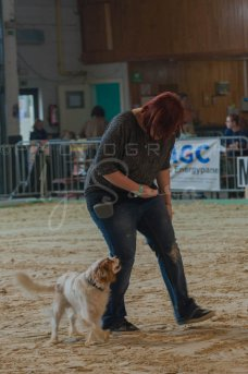 salon-du-cheval--hannut-43_26252759595_o