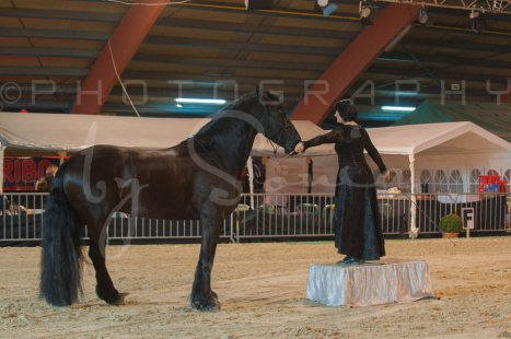 salon-du-cheval--hannut-442_26226806916_o