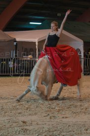 salon-du-cheval--hannut-468_25650055453_o