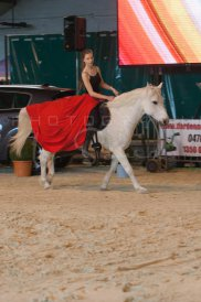 salon-du-cheval--hannut-474_25650055103_o