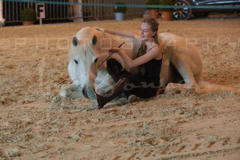 salon-du-cheval--hannut-520_25979875430_o
