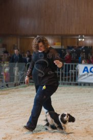 salon-du-cheval--hannut-56_26186485971_o