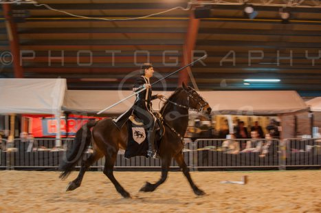 salon-du-cheval--hannut-572_26186450461_o