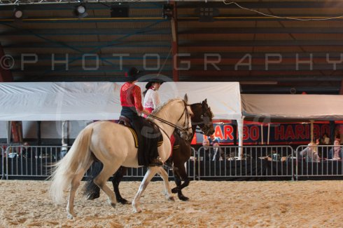salon-du-cheval--hannut-615_25979869310_o