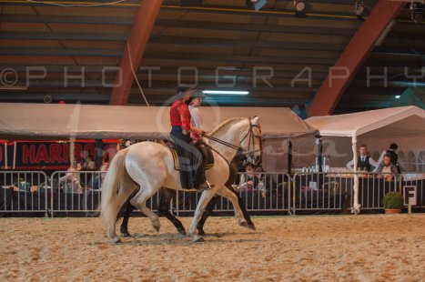salon-du-cheval--hannut-616_26252720525_o