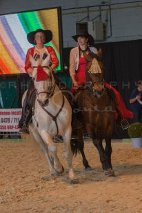 salon-du-cheval--hannut-620_26252719965_o