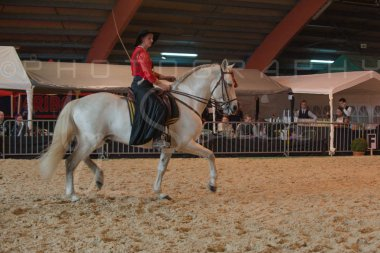 salon-du-cheval--hannut-627_26186446981_o