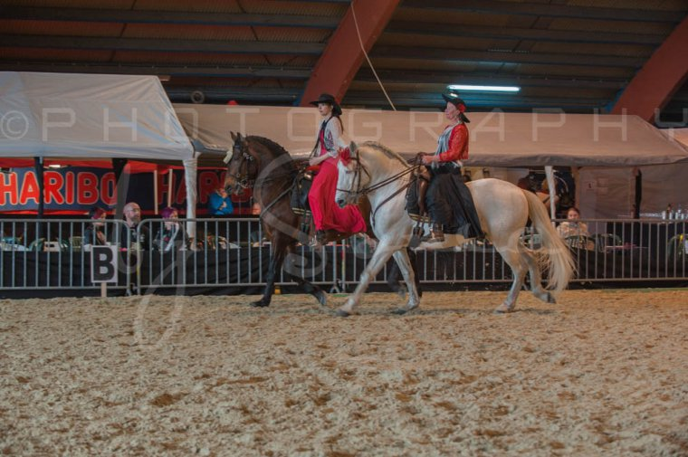 salon-du-cheval--hannut-645_25650041893_o