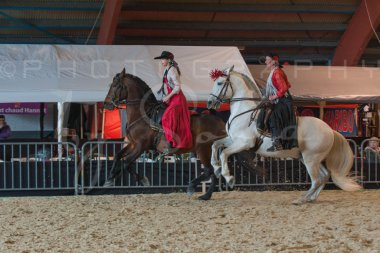 salon-du-cheval--hannut-646_25650041783_o