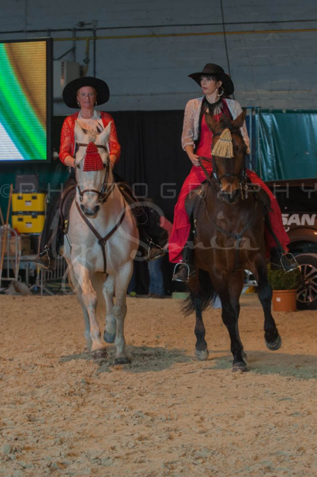 salon-du-cheval--hannut-659_26226791206_o