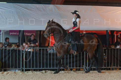 salon-du-cheval--hannut-669_25979864860_o