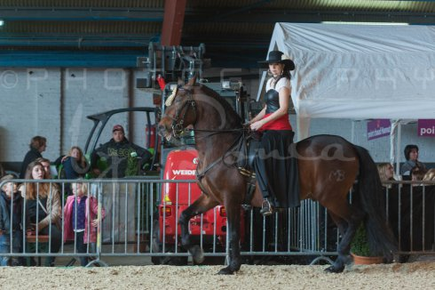 salon-du-cheval--hannut-670_25649894013_o
