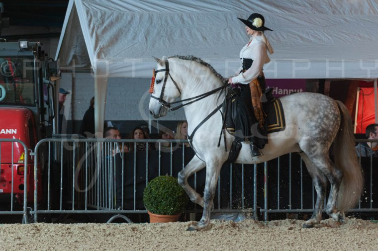 salon-du-cheval--hannut-672_26252716245_o
