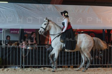 salon-du-cheval--hannut-673_26252715945_o
