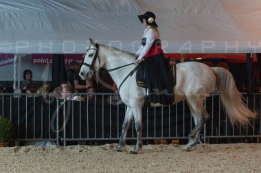 salon-du-cheval--hannut-674_25647938224_o