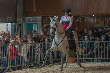 salon-du-cheval--hannut-675_26186442471_o