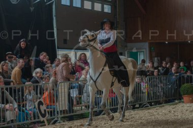 salon-du-cheval--hannut-676_26186442281_o