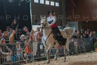 salon-du-cheval--hannut-677_26226789166_o