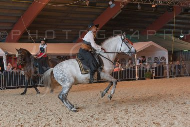 salon-du-cheval--hannut-678_26252714605_o