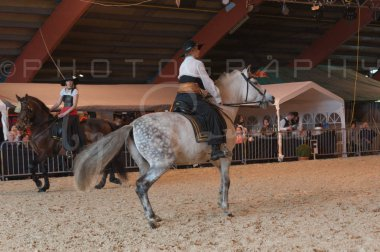 salon-du-cheval--hannut-679_25650038233_o