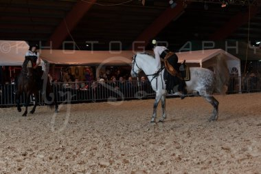 salon-du-cheval--hannut-682_26160278892_o