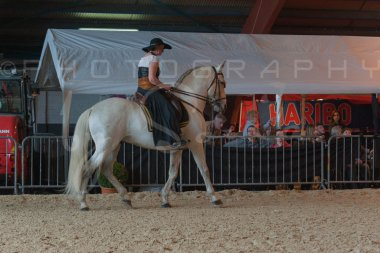 salon-du-cheval--hannut-683_25650037543_o