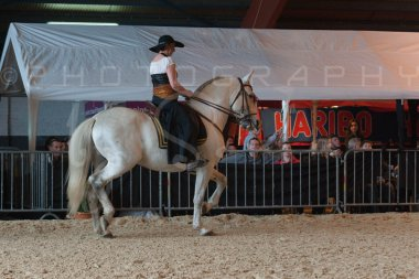 salon-du-cheval--hannut-684_25979861580_o