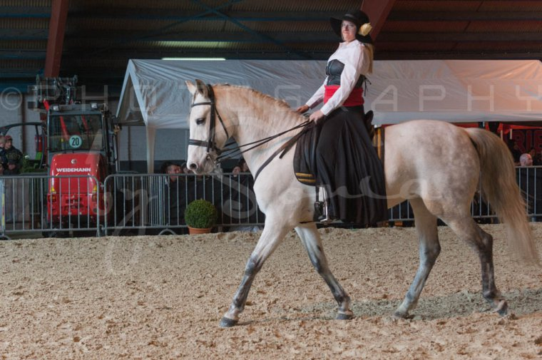 salon-du-cheval--hannut-689_26186295991_o