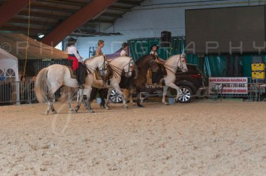 salon-du-cheval--hannut-692_26186439201_o