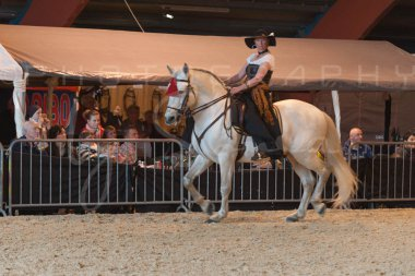 salon-du-cheval--hannut-693_25979860210_o