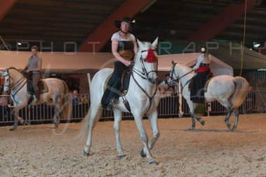 salon-du-cheval--hannut-699_26252710375_o