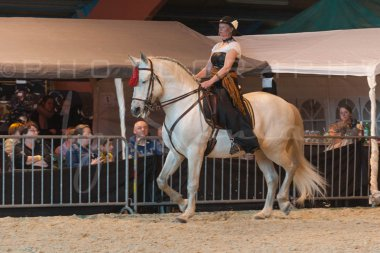 salon-du-cheval--hannut-710_26252708655_o