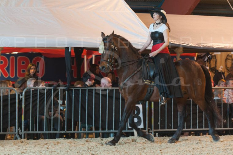 salon-du-cheval--hannut-713_25650031603_o