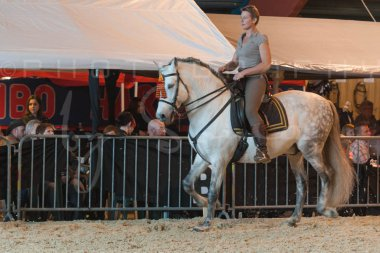 salon-du-cheval--hannut-714_26160272042_o