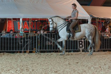 salon-du-cheval--hannut-722_25650029233_o