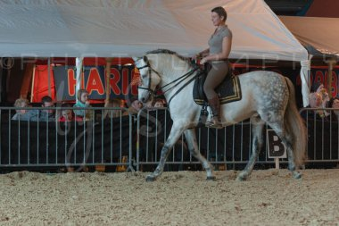 salon-du-cheval--hannut-723_25647794634_o