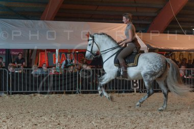 salon-du-cheval--hannut-729_26226643536_o