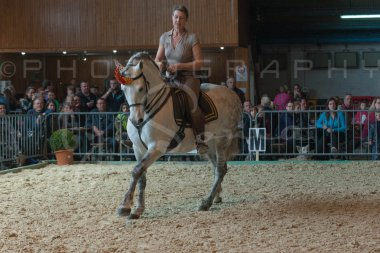 salon-du-cheval--hannut-738_26160267682_o