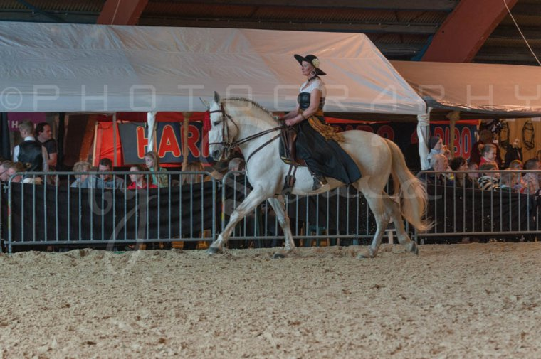 salon-du-cheval--hannut-744_25979850710_o